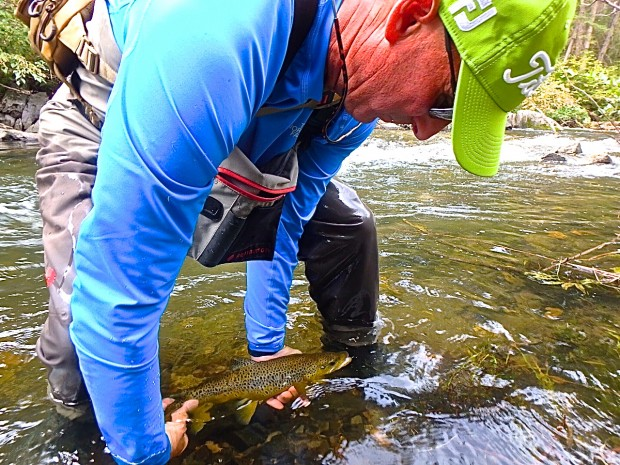 Tim releases a nice Black Hills Brown!