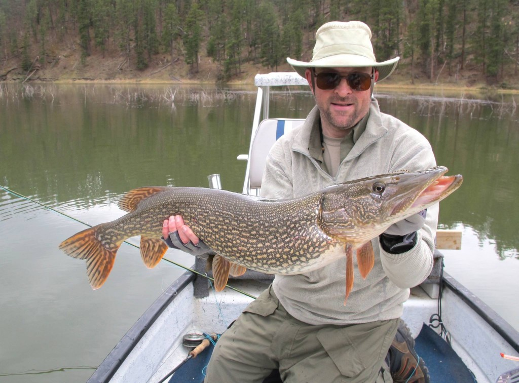 Happy client with a hefty Pike caught on a popper on the surface