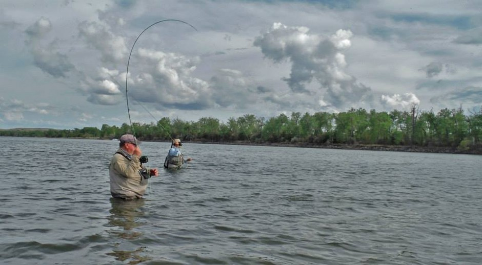 Missouri river warmwater class may 21 22 dakota angler for Fly fishing south dakota