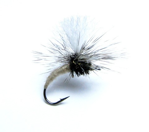 Klinkhamer Special - the most versatile dry fly around!