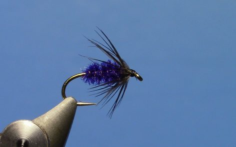 Peacock & Starling Soft Hackle