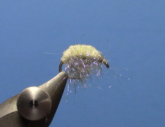 Fly Tying Videos Dakota Angler Outfitter Gorgeous Scud Fly Pattern