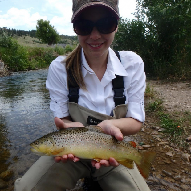 Spearfish Creek Brown Trout Black Hills Fishing