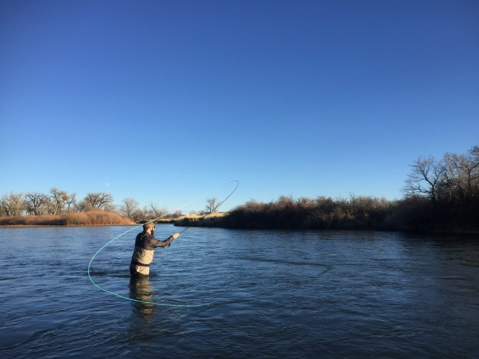Bighorn river trout spey trip 2017 dakota angler for Bighorn river fly fishing